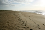 San Antonio Beach Rocha